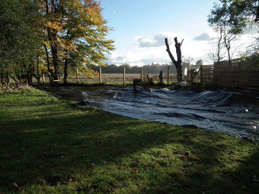 Farm cottage west lothian stone wood water light for Wildlife pond design uk