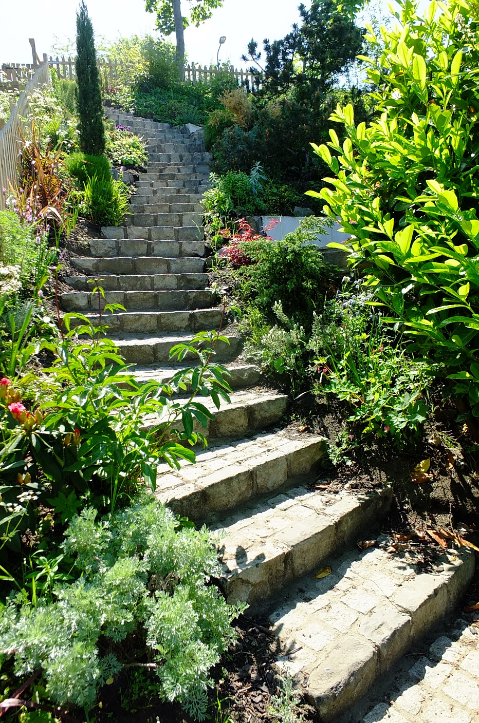 steep coastal garden Edinburgh mediterranean