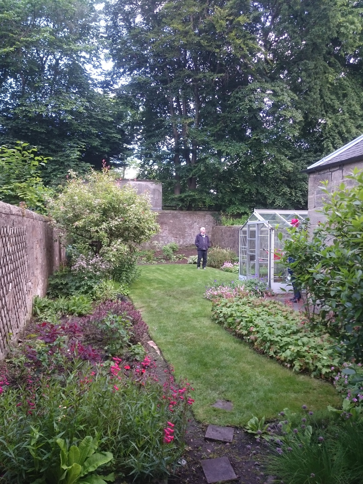garden before redesign Edinburgh