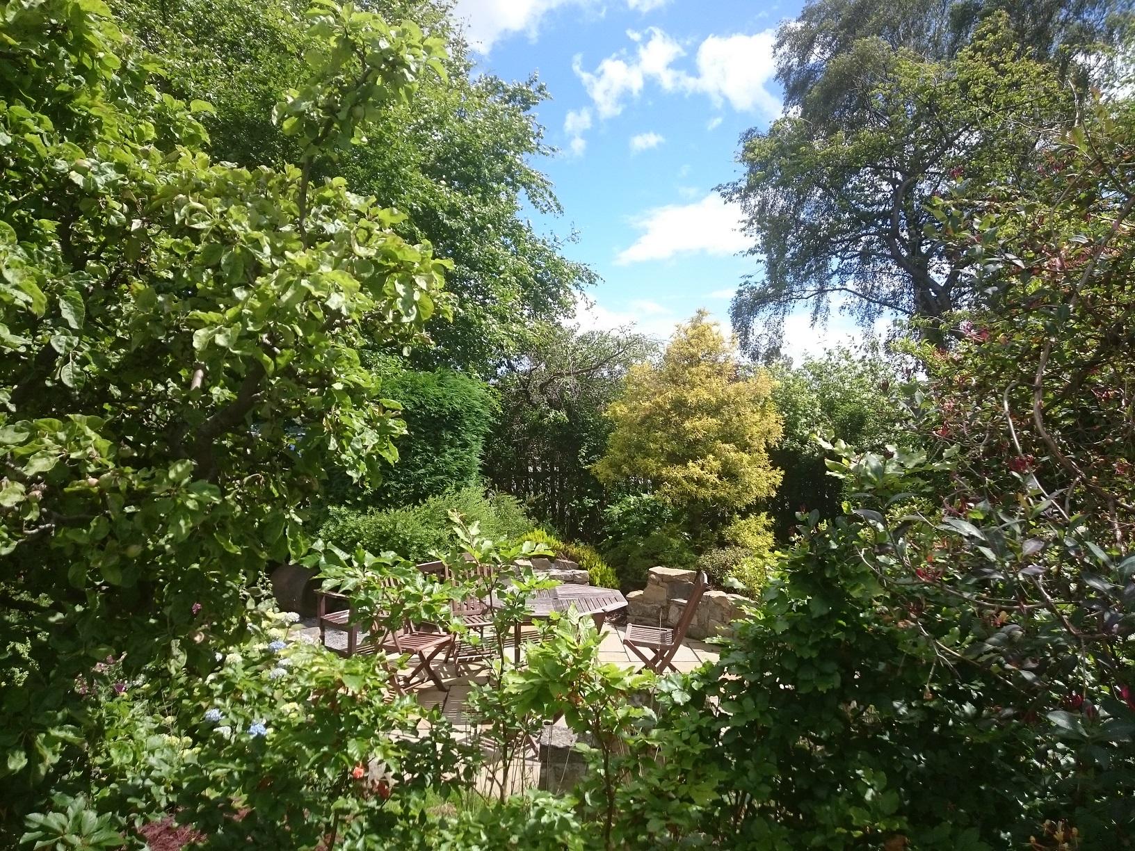 woodland wild garden edinburgh