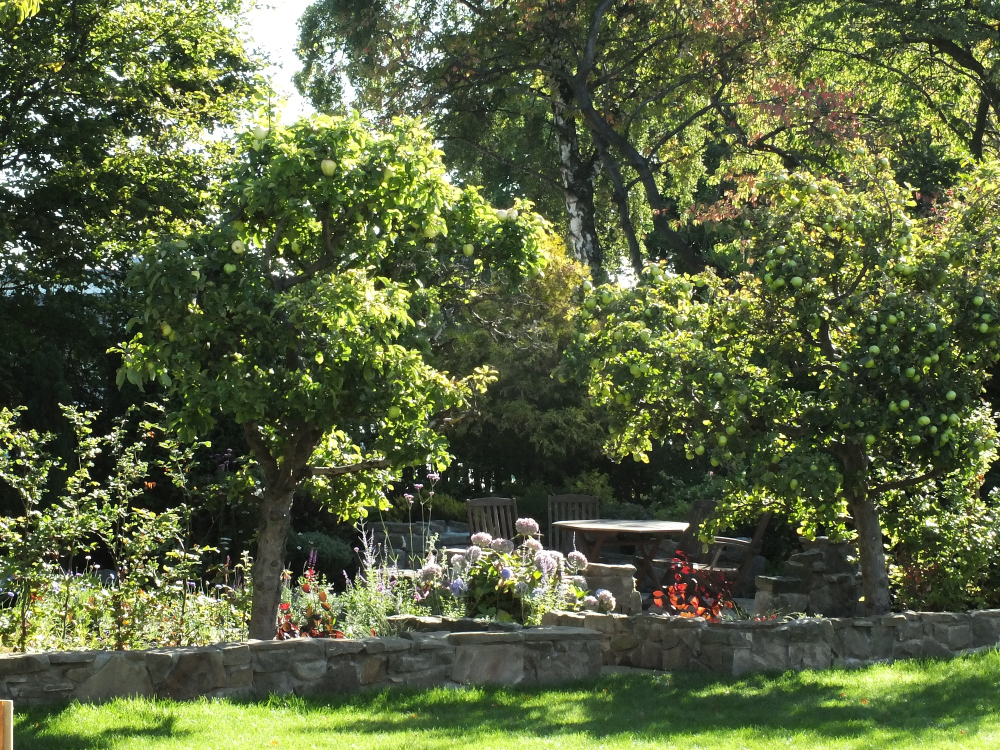 autumn woodland patio Edinburgh garden