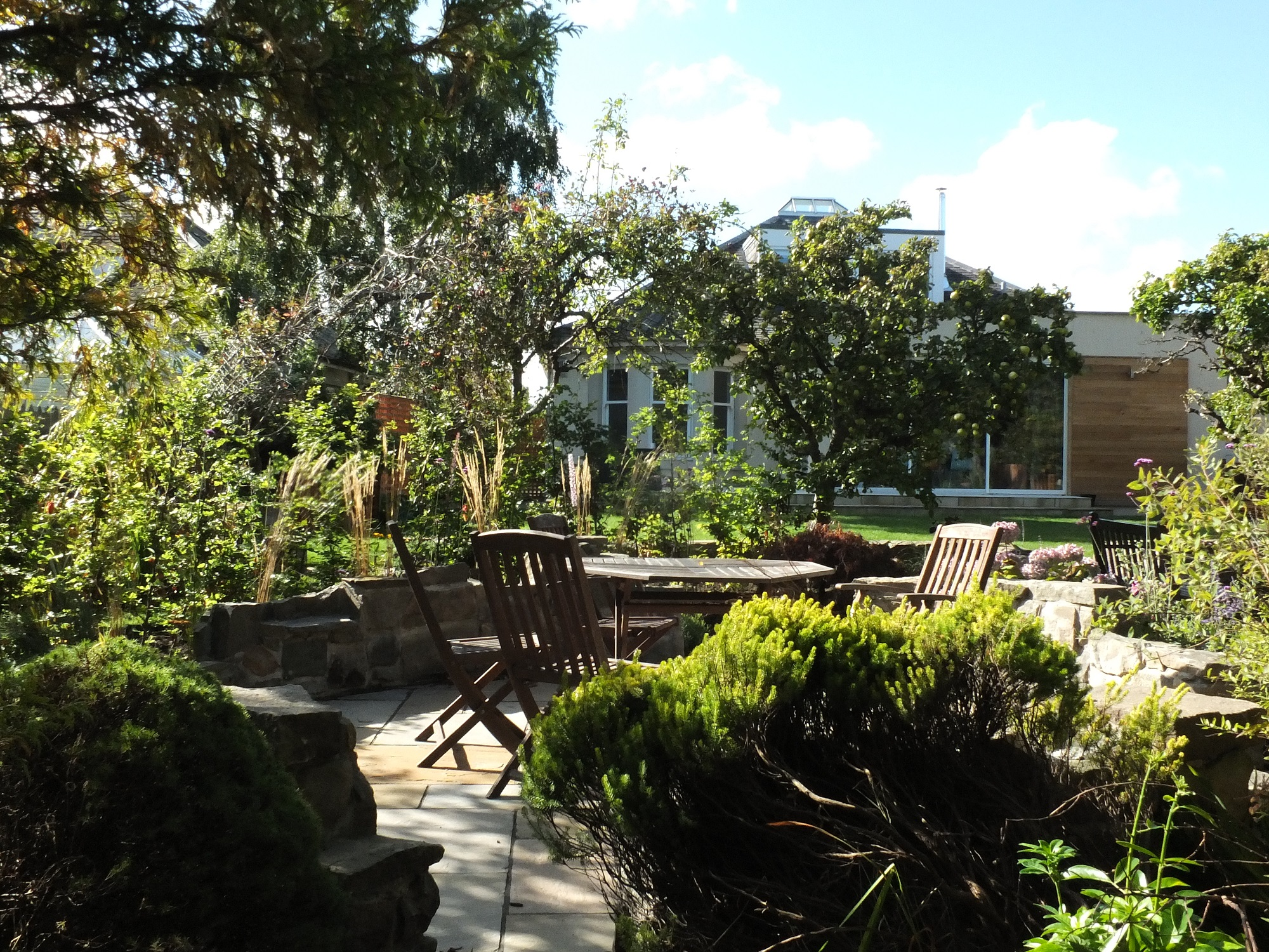 woodland garden design Edinburgh